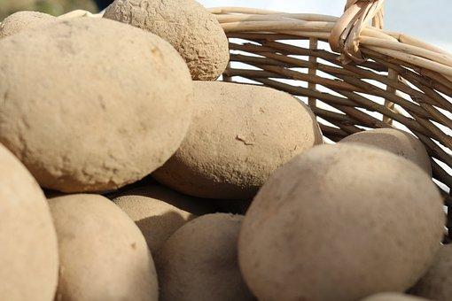 Potatoes, Basket, Lantarbeit, Bauer, Bio, Nature