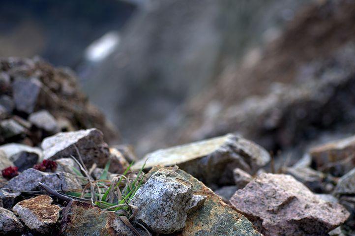 Rocks, Rocky, Plant, Rock Slide, Cliff, Hill, Mountain