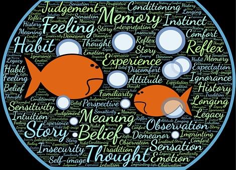 Fishbowl, Fish, Immersion, Environment, Surroundings