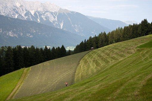 Hay Making, Mountain Fields, Tulfes, Innsbruck