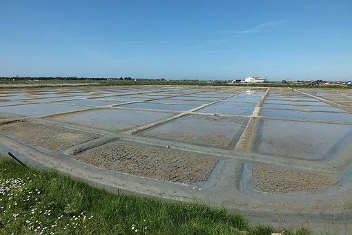 Salt Marshes, Salt, Noirmoutier