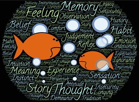 Underwater, Fish, Immersion, Environment, Surroundings