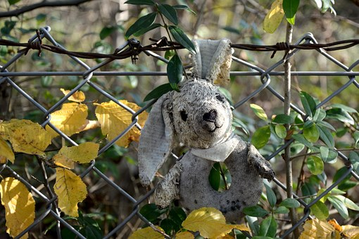 Stuffed Animal, Old, Forget, Lost, Wire Mesh Fence
