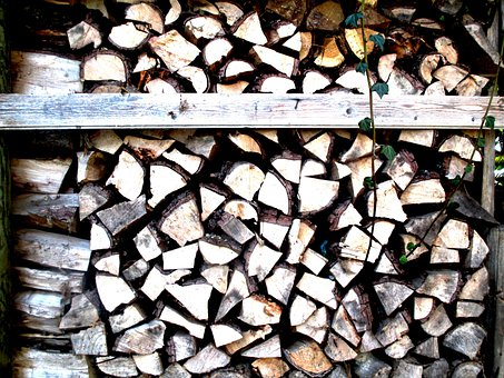 Wood, Holzstapel, Firewood, Stacked, Ivy, Entwine
