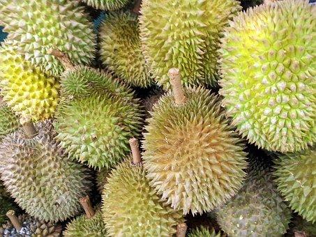 Singapore, Durian, Fruit, Juicy, Food, Ripe, Healthy