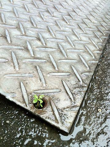 Flooring, Strong 韌, Life, It's Raining, I Manage