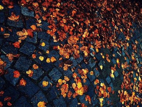 Leaves, Autumn, Cobbles, Paving, Path, Ground