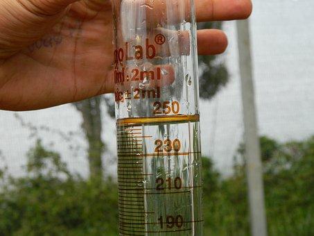 Test, Beaker, Hand, Measure, Agua
