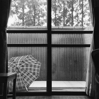 The Yard, Umbrella, Fences, It's Raining, Home