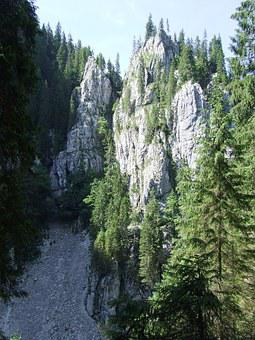 Miracles, Karst, Forest, Cave, Cliff, Padis