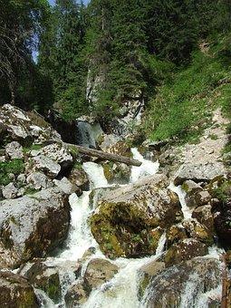 Waterfall, Karst, Stream, Forest, Nature, Transylvania