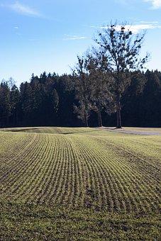 Landscape, Arable, Spring, Earth, Green, Fresh, Series