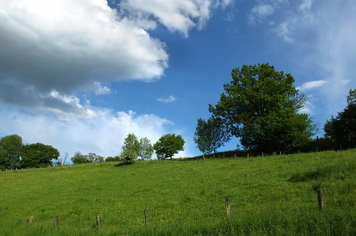 Landscape, Sky, Clouds, Trees, Summer, Meadow, Green
