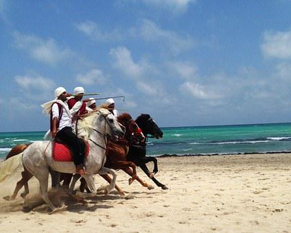 Tunisia, Djerba, Horses, Sea, Ocean, Water, Sandy