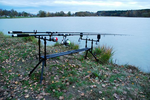 Rods, Fisheries, Tool, Pond, Evening, Stand, Bank