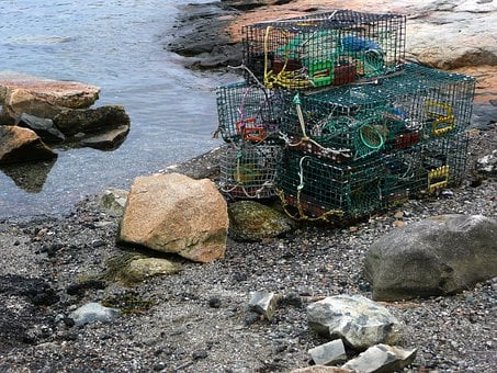 Cages, Lobster, Fishery, Water, Shore, Rocky, Fishing