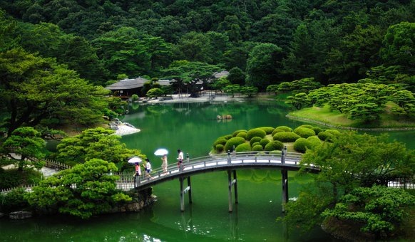 Japan, Japanese Garden, Bridge, Forest, Trees, Woods