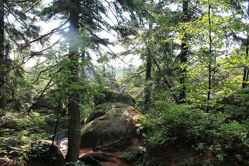 Erratic Rocks, Kudowa Zdrój, The National Park