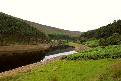 Peak District, Reservoir, Howden Reservoir, Trees, Calm