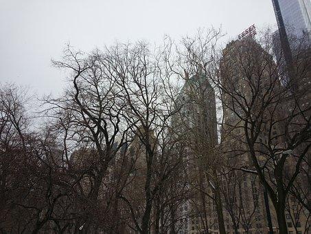 New York, Central Park, Hotel Essex, Manhattan, Usa