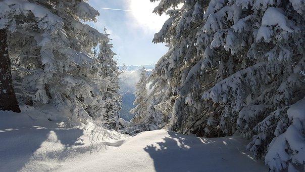 Ski, Snow, Winter, Mountains, Alpine, Skiing