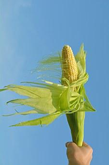 But, Corn, Olympic Flame