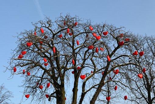 Heart, Love, Valentine's Day, Together, Tree, Romance