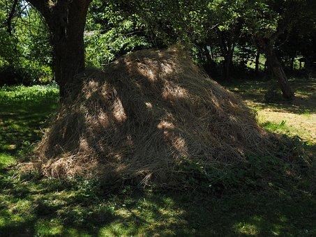 Haystack, Hay, Grass Pile, Meadow, Garden