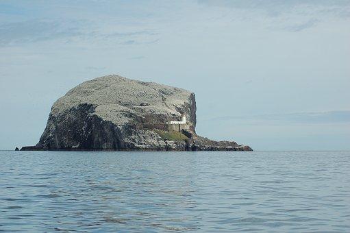 Bass Rock, Island, Lighthouse, Water, Sea, Rock