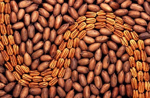 Pekanuesse, Nuts, Walnut Crop, Shell, Nuclear, Walnut