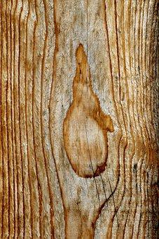 Wood, Timber, Material, Sample, Grain, Structure