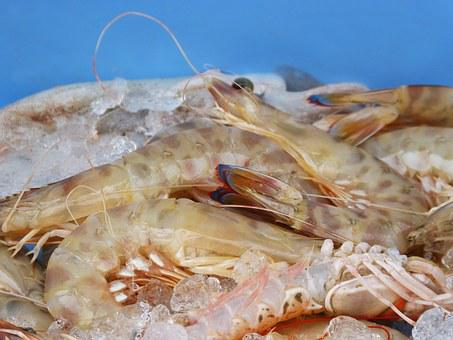 King Prawns, Fresh Fish, Mediterranean Diet