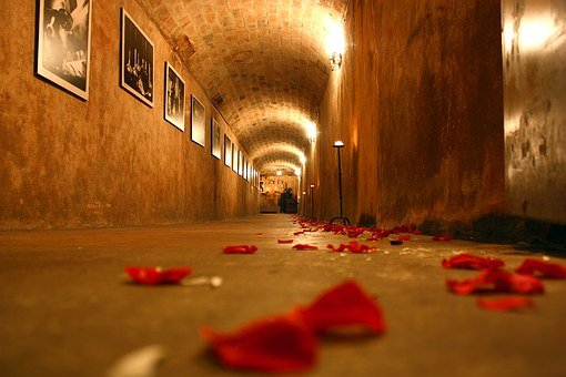 Cellar, Tunnel, Rose, Marriage, Rosa, Formal Wear