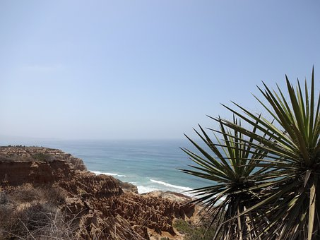 Ocean, Sea, Bluff, Palm, California, Coast, San Diego