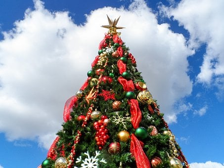 Christmas Tree, Christmas, Holiday, Xmas, Green, X-mas