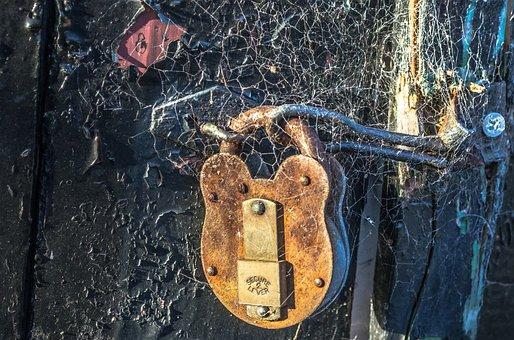 Padlock, Gate, Locked, Private, Close-up, Rusty, Cobweb