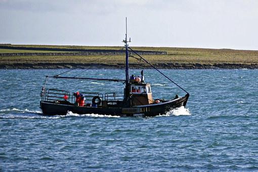 Fishing, Creel Boat, Sea, Industry, Fish, Creel, Boat