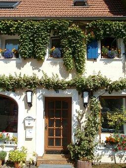 House, Front, Entrance, Door, Facade, St Arnual, Ivy