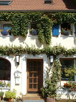 House, Front, Entrance, Door, Facade, St Arnual, Ivy