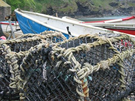 Nets, Lobster, Fishing, Port, Sea, Industry, Harbour