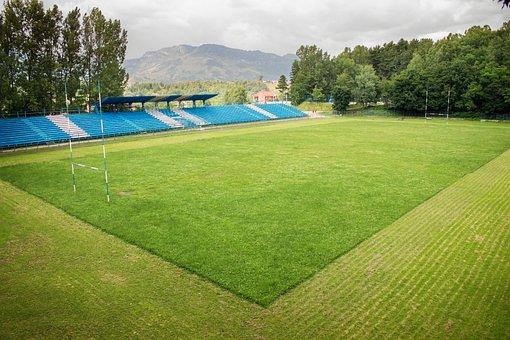 Stadium, Rugby, Sport Field, Grass