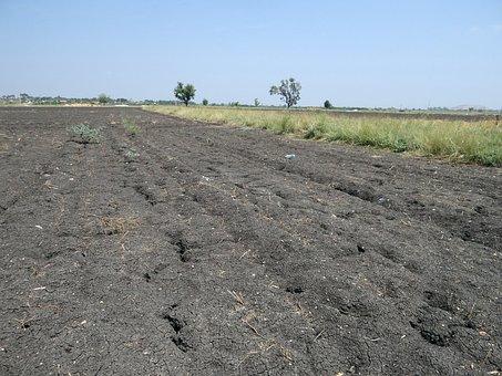 Black Soil, Tropical Chernozem, Cracked, Basaltic
