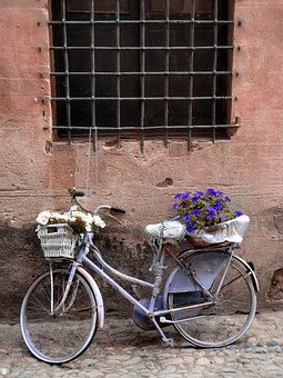 Bicycle, Flowers, Trash, Historical Centre, Finalborgo