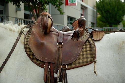 Camargue, Horse, Saddle, Leather