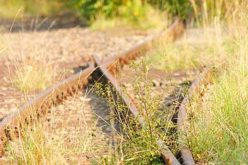 Soft, Overgrown, Track, Mystical, Lapsed, Rails, Rusted