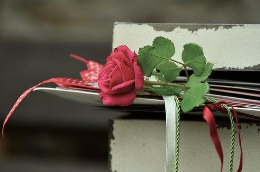 Rose, Romance, Letters, Friendship, Bands, Rose Bloom