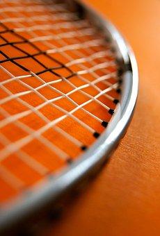 Sport, Badminton, Bat, Network, Leisure, Fitness, Play
