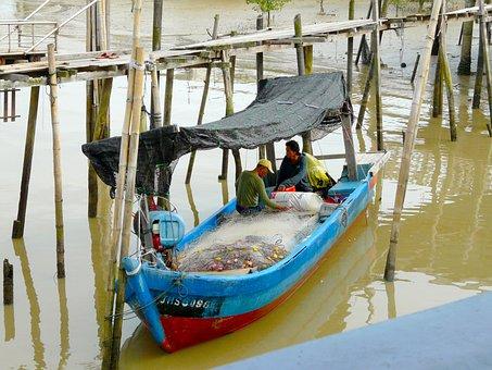 Fishing, Fish, Kukup, Malaysia, Boat, Ship, Tradition