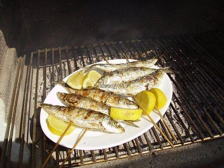 Sardines, Sardinas, Fish, Seafish, Mediterranean