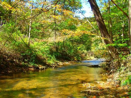 River, Trees, West Virginia, Water, Nature, Landscape